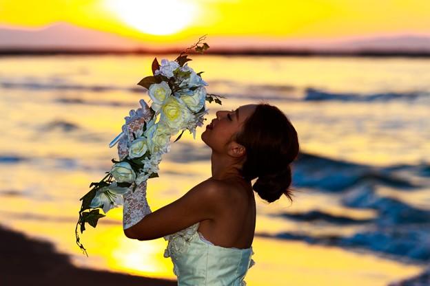 Dears Wedding