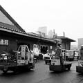 Tsukiji08